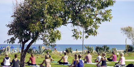 Yoga på Hotel Pilot Beach i Georgioupolis på Kreta, Grækenland.