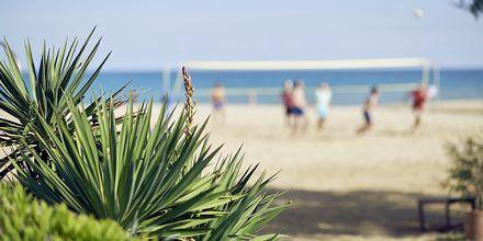 Stranden ved Hotel Pilot Beach i Georgioupolis på Kreta, Grækenland.