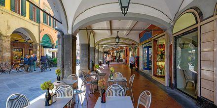 Hyggelig gade i Pisa, Toscana, Italien.