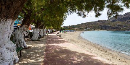 Gå langs stranden og nyd den smukke udsigt.