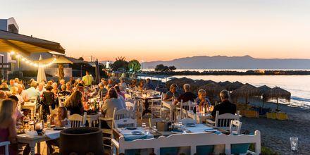 I Platanias ligger den populære restaurant Olive Tree med udsigt over havet.