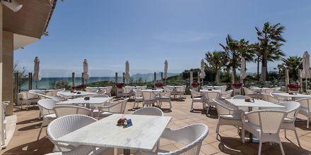 Playa Esperanza Suites på Mallorca, Spanien.