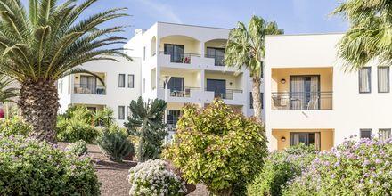 Playitas Aparthotel, Fuerteventura.