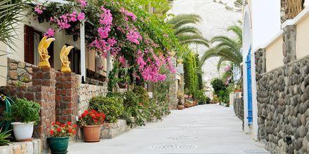 Grønne omgivelser på Hotel Polydefkis.