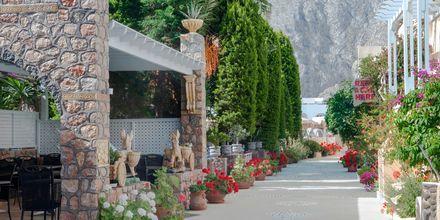 Frodige omgivelser på Hotel Polydefkis i Kamari på Santorini, Grækenland.