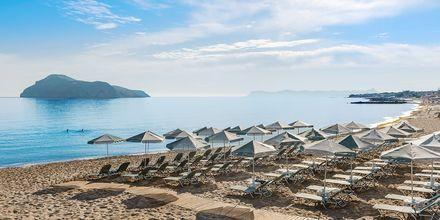 Strand på Hotel Porto Platanias Luxury Selection.