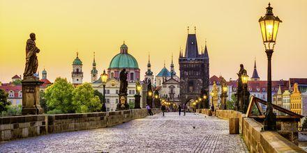 Karlsbroen i Prag, Tjekkiet.