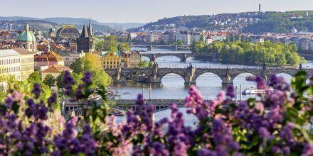 Prag i Tjekkiet er et perfekt rejsemål for weekendrejser.