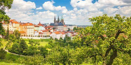 Prag, Tjekkiet.