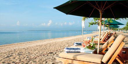 Stranden ved Hotel Prama Sanur Beach i Sanur, Bali
