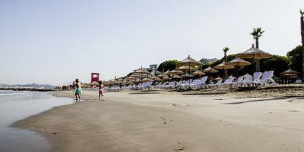 Stranden ved Prestige Resort, Durres Riviera i Albanien.