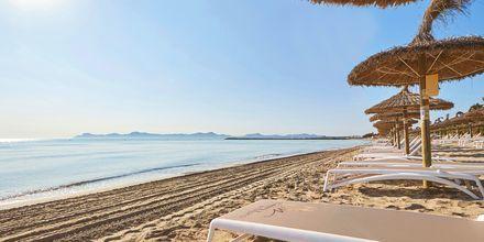 Stranden ved Prinsotel La Dorada, Mallorca.