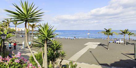 Strand i Puerto de la Cruz på Tenerife, De Kanariske Øer, Spanien.