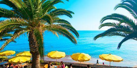 Puerto del Carmen på Lanzarote, De Kanariske Øer, Spanien.