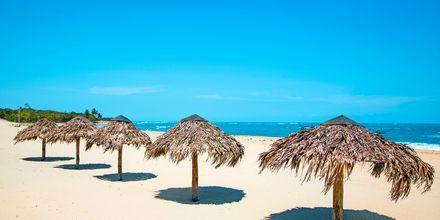 Costa Dorada, Puerto Plata, Den Dominikanske Republik.