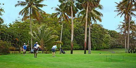 Golfbanen i Playa Dorada, Puerto Plata, Den Dominikanske Republik.