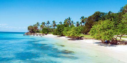 Barcardi Island, Den Dominikanske Republik.