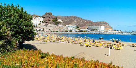 Stranden ved Puerto Rico på Gran Canaria, De Kanariske Øer, Spanien.