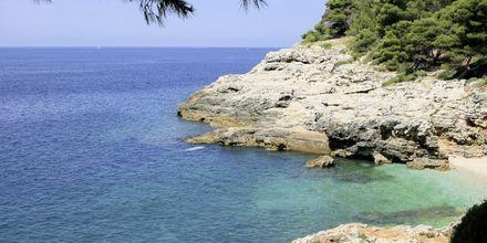 Kamenjak Beach udenfor Pula, Kroatien.