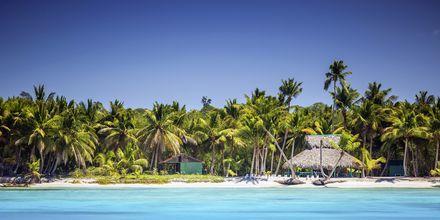 I Punta Cana venter turkisblåt vand, hvide strande og vajende palmer ...