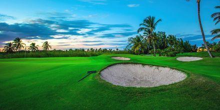 Der findes mange fine golfbaner i Punta Cana på Den Dominikanske Republik.