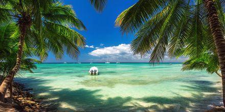 Afslapning og fred er på skemaet i Punta Cana, Den Dominikanske Republik.