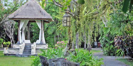 Haven på Hotel Puri Santrian i Sanur, Bali.