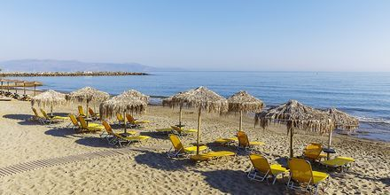 Stranden ved Hotel Rania på Kreta, Grækenland.
