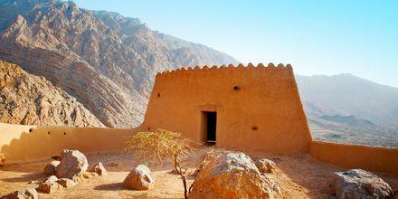 Dhayafortet i Ras Al Khaimah, De Forenede Arabiske Emirater.
