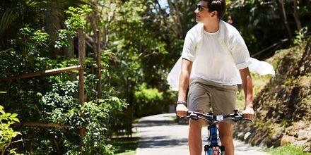 Oplev naturen ved at låne en cykel på Hotel Rawi Warin i Koh Lanta, Thailand.