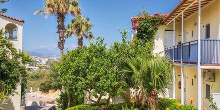 Hotel Rethymno Mare Resort på Kreta, Grækenland.