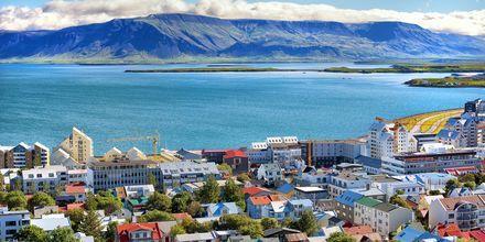 Smuk natur og en lille storby Reykjavik