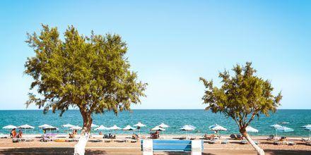 Afandou-stranden på Rhodos, Grækenland.