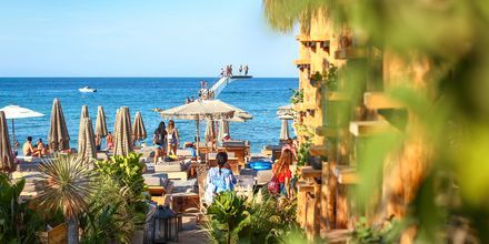 Den populære Eli Beach ved Rhodos by, Rhodos i Grækenland.
