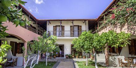 Hotelområdet på Hotel Rigas, Skopelos.