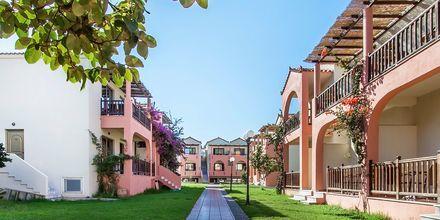 Hotel Rigas, Skopelos.