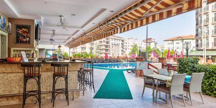 Poolbar på Hotel Riviera Apart i Alanya, Tyrkiet.