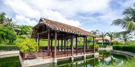 Hotel Romana Beach Resort i Phan Thiet