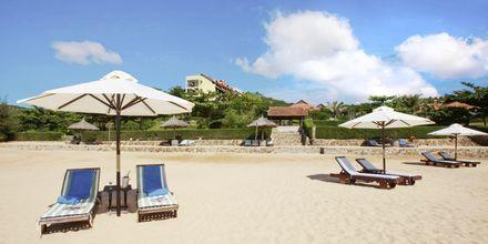 Stranden ved hotel Romana Beach Resort i Phan Thiet