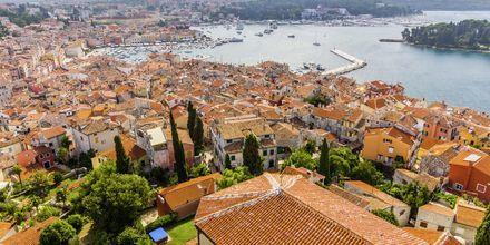 Udsigt over Rovinj i Istrien, Kroatien.