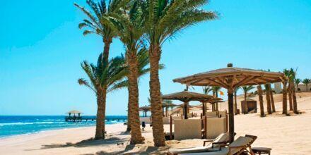 Strand, Sahl Hasheesh, Egypten.