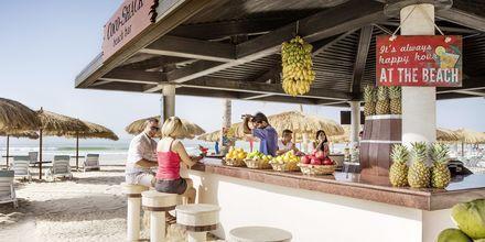 Coco Shack Beach Bar på Salalah Rotana Resort, Oman