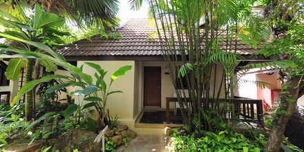 Superior-værelse i bungalow på Hotel Samui Natien Resort på Koh Samui, Thailand