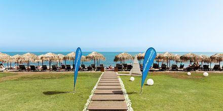 Stranden ved Hotel Santa Helena Beach i Platanias på Kreta, Grækenland.