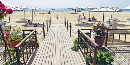 Morabeza Beach Club ligger direkte på stranden i Santa Maria, Kap Verde