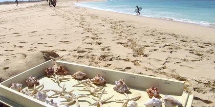 Souvenirs på stranden Santa Maria Beach, Kap Verde