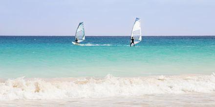 Windsurfing ved Santa Maria Beach på Sal, Kap Verde
