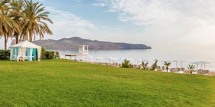 Hotel Santa Marina Plaza på Kreta, Grækenland.