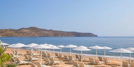 Stranden ved Hotel Santa Marina Plaza på Kreta, Grækenland.