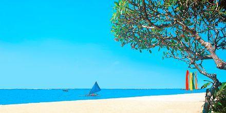 Stranden i Sanur.